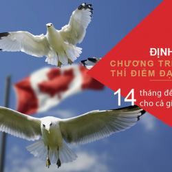 Định cư Canada 2020: 5 chương trình định cư dễ dàng & hiệu quả