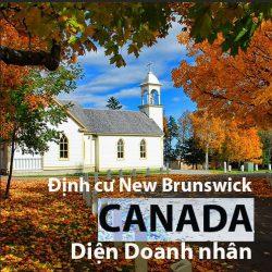 Định cư New Brunswick Canada: Điểm đến đầu tư lý tưởng cho doanh nhân Việt
