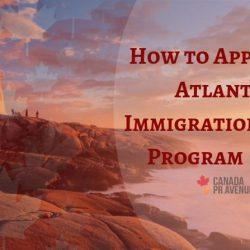 Định cư AIP: Atlantic Immigration Pilot - P. 3: Đơn xin nhập cư và hỗ trợ sau khi đến
