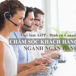 Định cư Canada chương trình AIPP: Việc làm chăm sóc khách hàng ngành ngân hàng