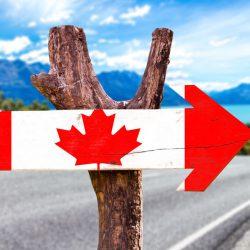 Tình hình nhập cư Canada qua đợt xét chọn Express Entry đầu tiên năm 2020