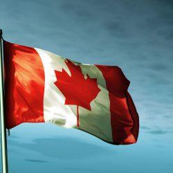 Doanh nhân Việt được xét điểm và nhận ITA Đề cử tỉnh bang Canada giữa tâm dịch Covid-19