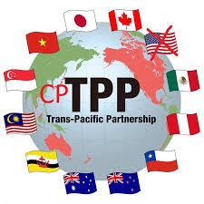 CPTPP – Bước 2 - Tìm kiếm lợi ích sản phẩm từ giảm thuế