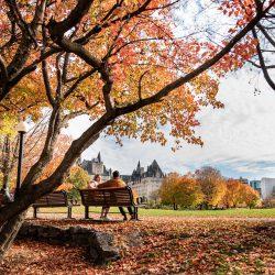 Cập nhật tin tức visa nhập cảnh Canada đáng chú ý tháng 10/2020